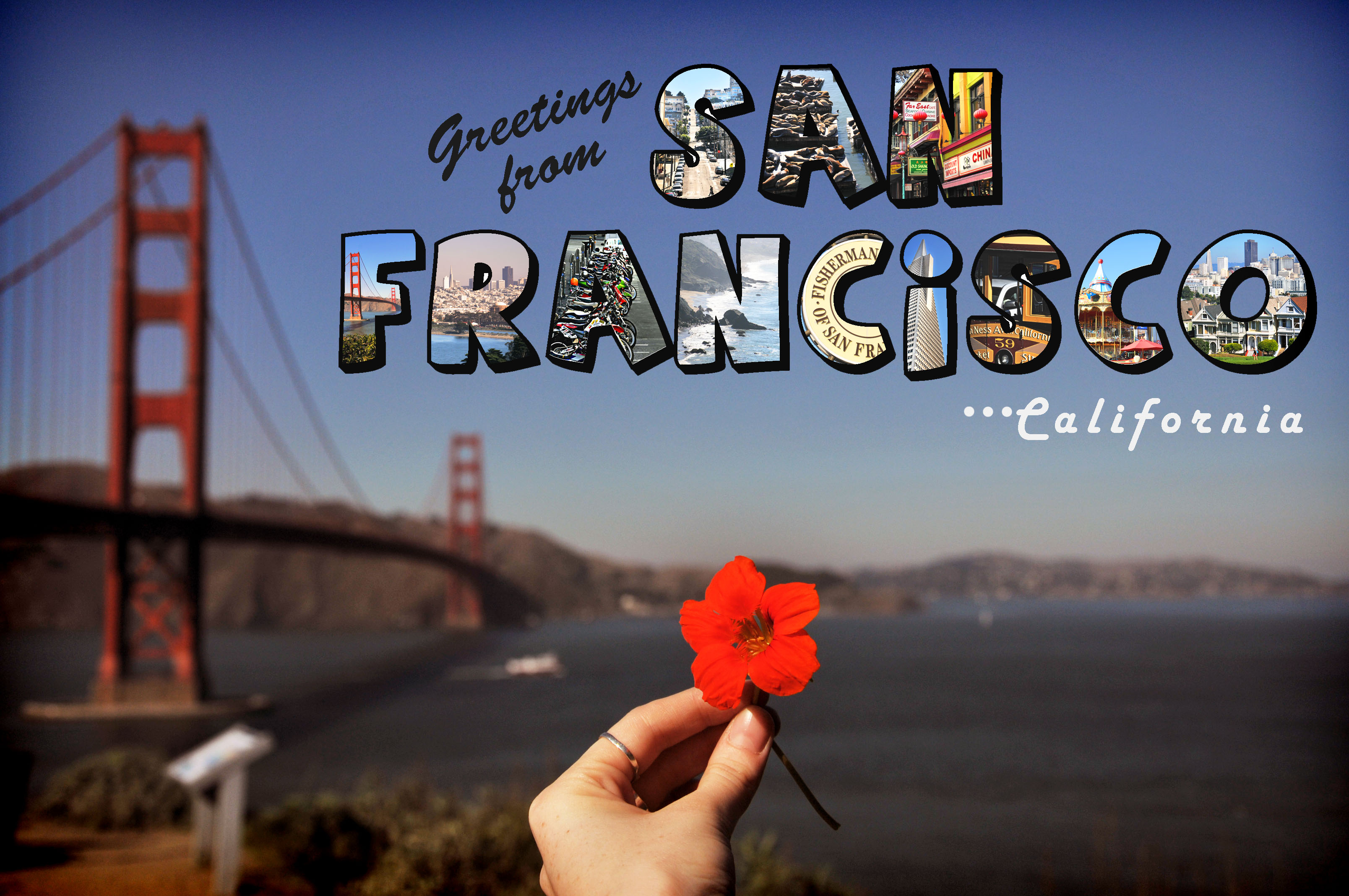 $50 off select Vacations from San Francisco