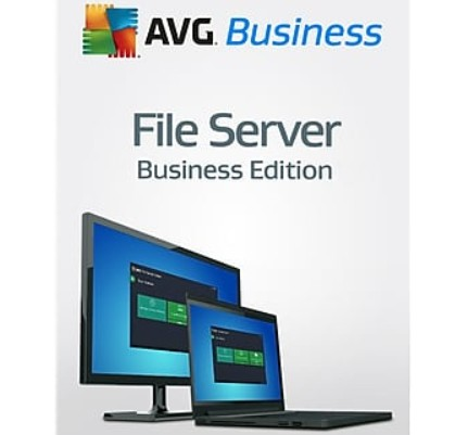 30% AVG File Server Business Edition